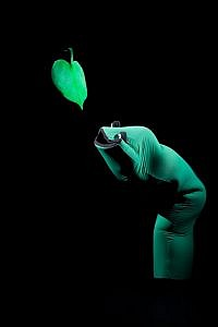 Mummenschanz famous green worm mime